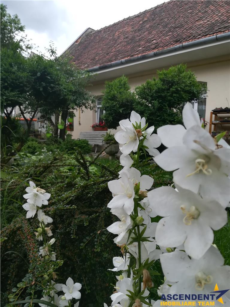 OFERTA REZERVATA!! Proprietate cu gradina, pomi fructiferi, in alintul razelor soarelui, Brasov