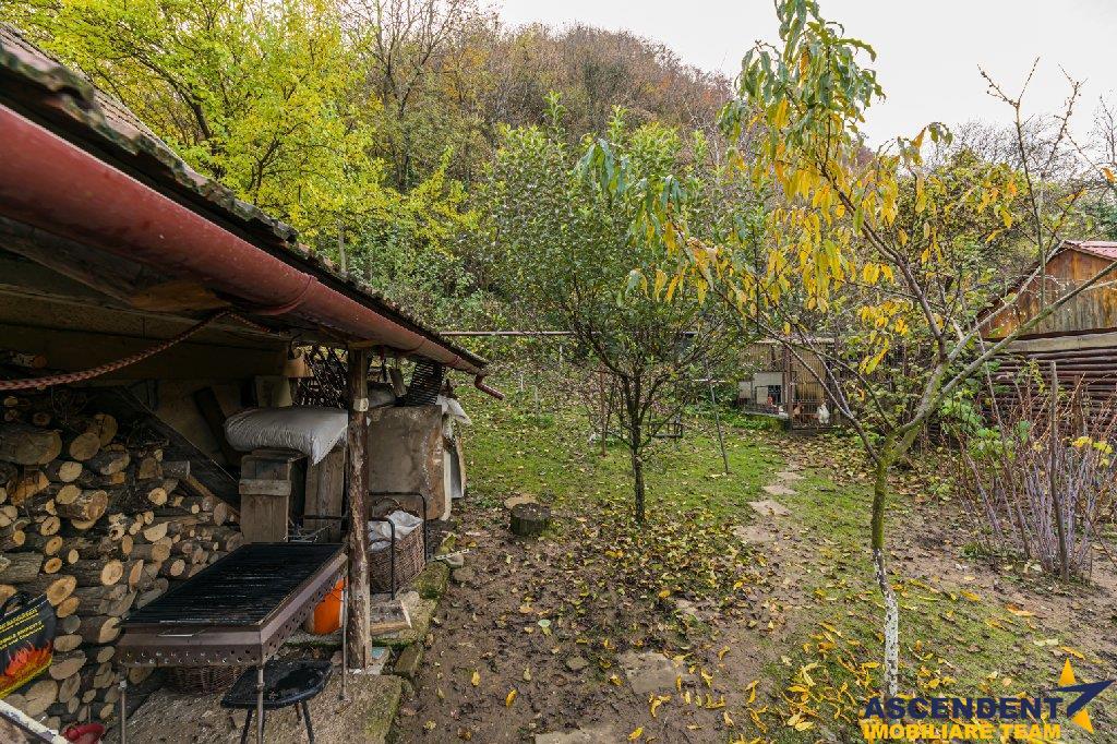 EXPLOREAZA VIRTUAL! Peisaj de poveste, la poalele Tampei, Brasov