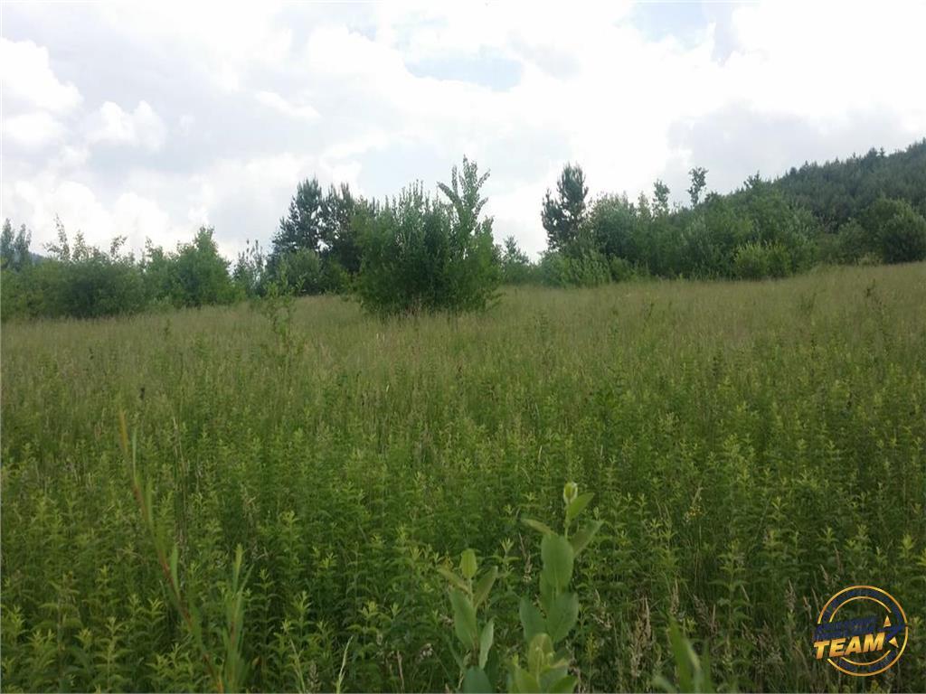 1.400 mp teren intravilan, in incantarea naturii, Sacele, Brasov