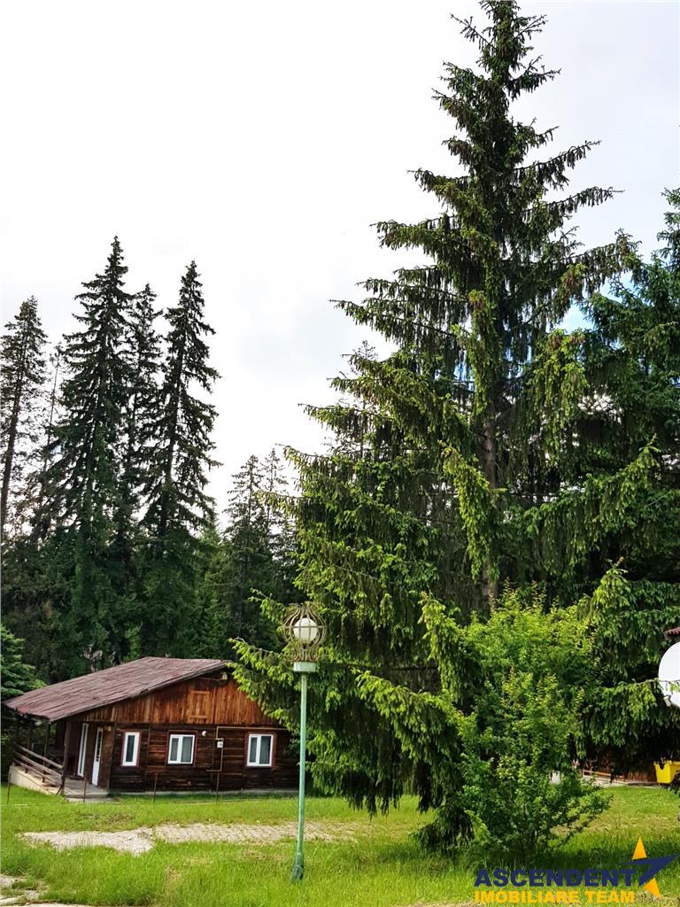 FILM PREZENTARE! 5.000 mp, intravilan, In inima celei mai renumite statiuni, montane, din Romania, Poiana Brasov