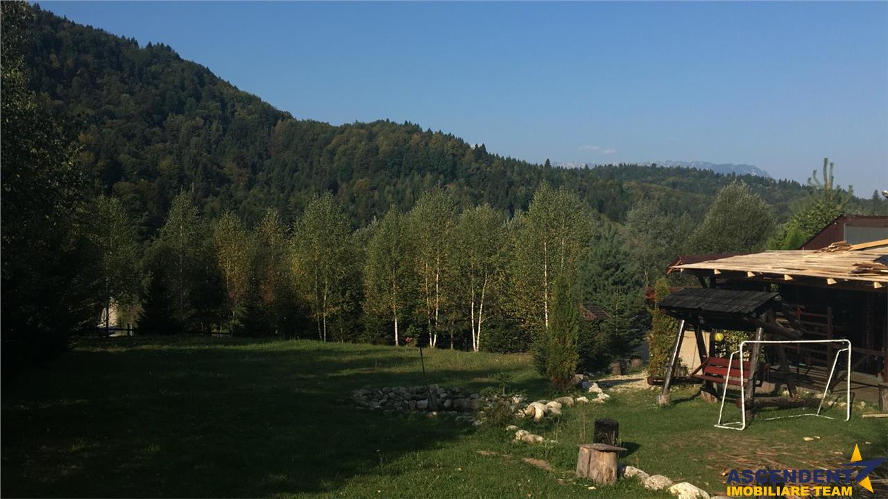 Pensiune incoronata de linistea naturii, Romacril, Brasov