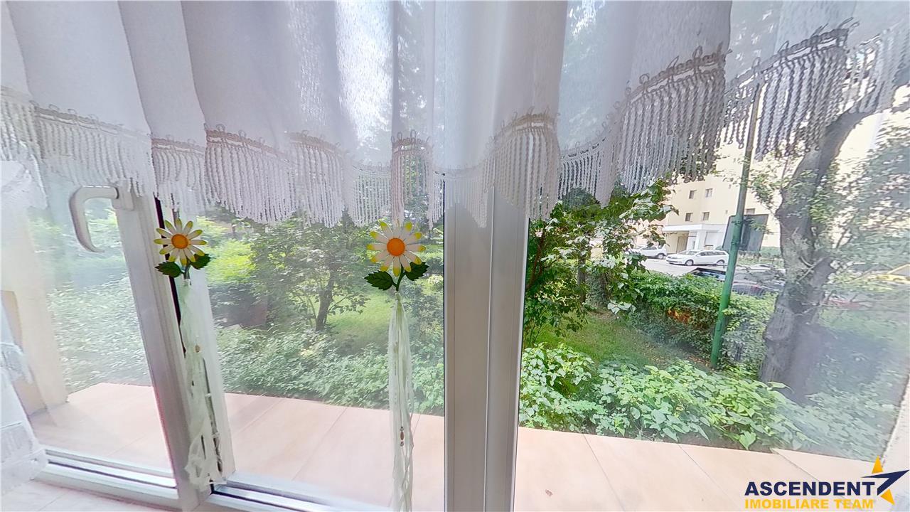 EXPLOREAZA VIRTUAL! Suprafata generoasa, intre gradini de flori, Central, Brasov