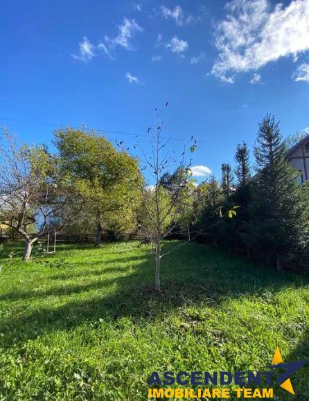 Resedinta si Rezidenta Protocol, in statiunea montana Bran