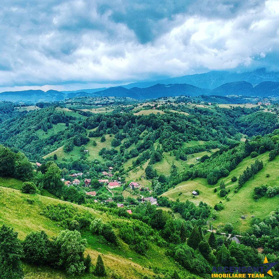 Resedinta in natura, pe domeniu de 1.200 mp teren, Bran, Moieciu