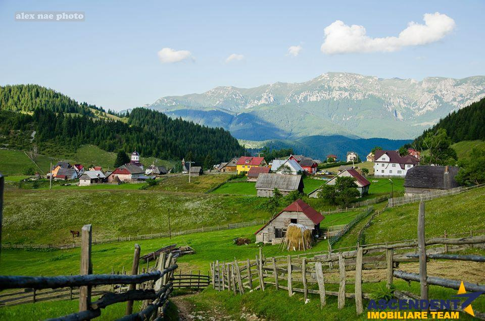 Locatie cu patru anotimpuri intr o zi, pe 2.350 teren, Bran, Brasov