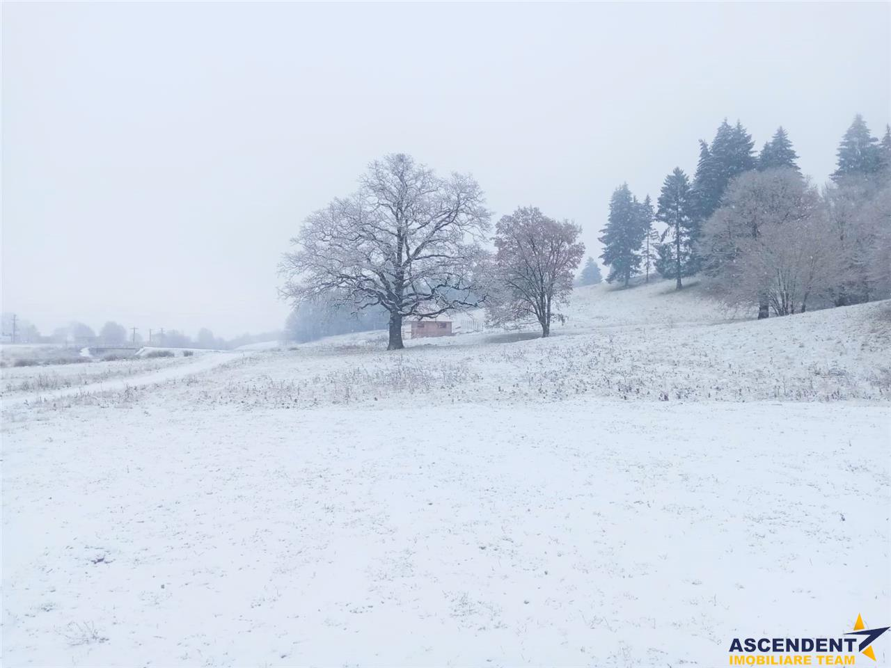OFERTA TRANZACTIONATA!!Teren pentru investitie in statiune turistica, Valea Maierusului, Brasov