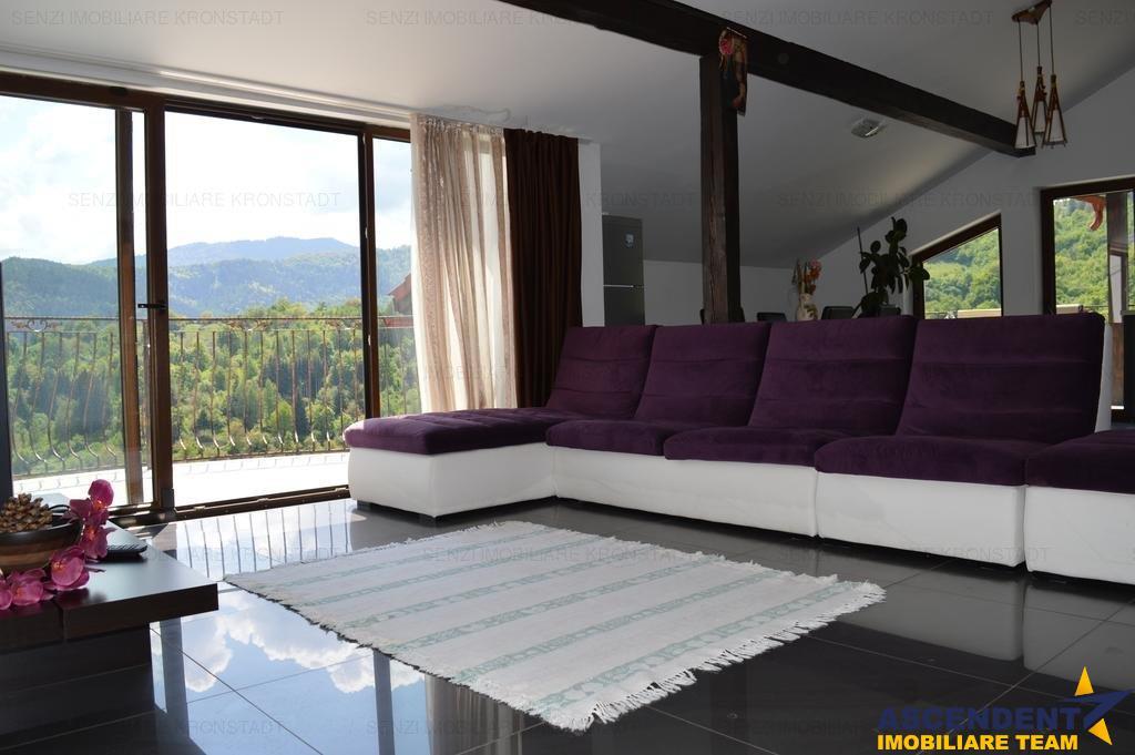 Vila Speciala, Brasov, pozitie panoramica