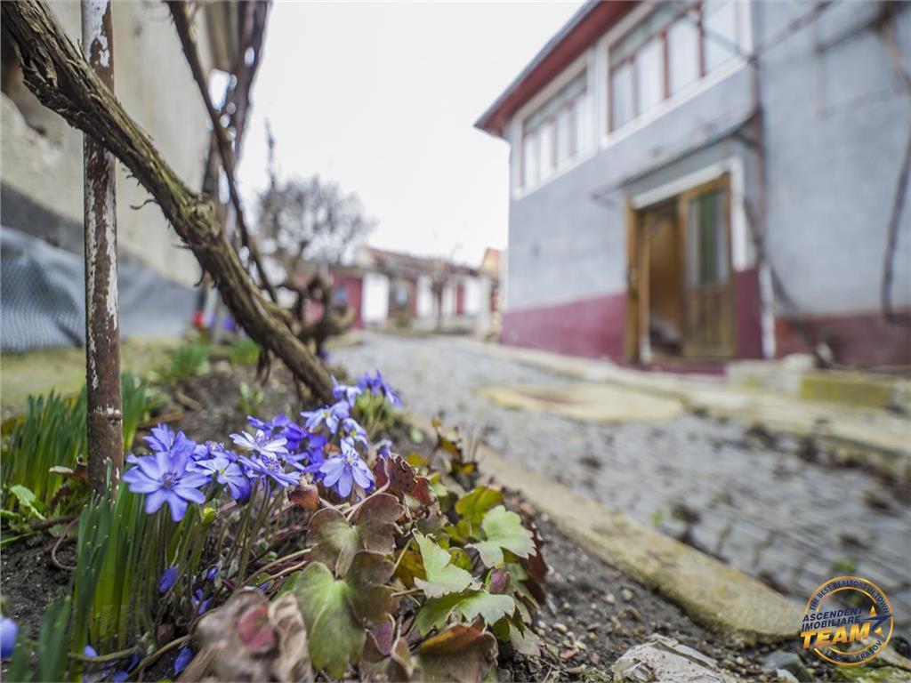 Casa speciala  traditionala, cu 457 mp teren, Centru  Rupea, Brasov