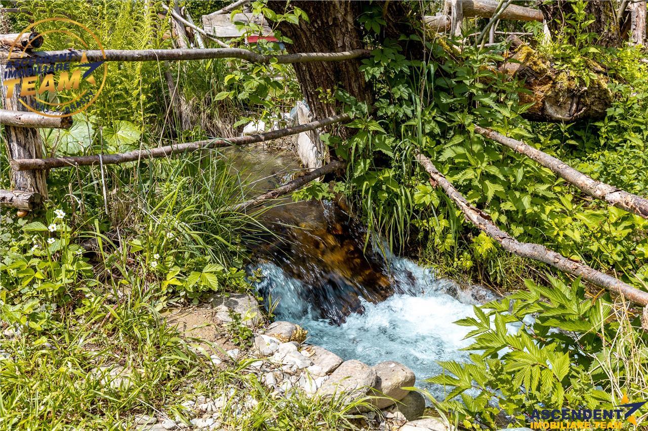 FILM Prezentare! In susurul apei curgatoare, sub mantia Muntilor Fagaras, pe 1.800 mp teren