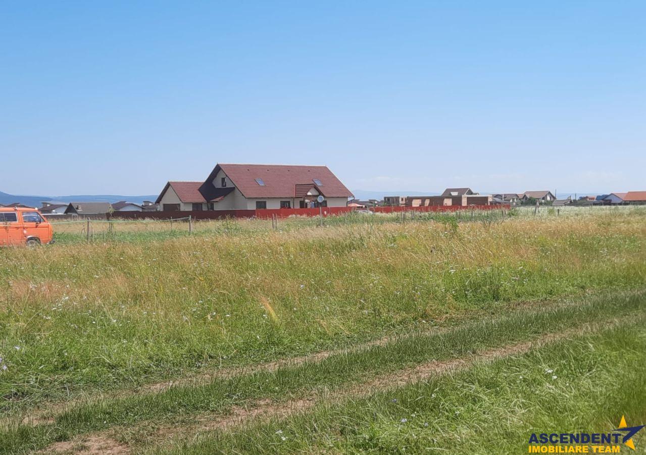 1.000 mp teren intravilan, Harman, Brasov