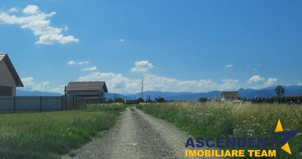 Harman, Brasov, 8.500 mp