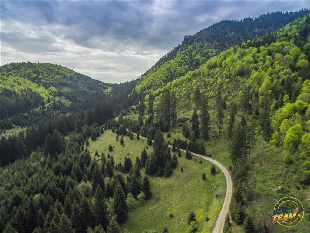 VEZI Filmare cu drona!!  9.000 mp,in imbratisarea purei naturi,partial impadurit