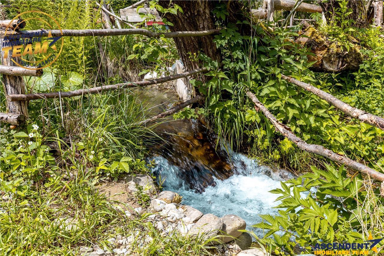 FILM! Pe 1.800 mp teren, in susurul apei, sub mantia Muntilor Fagaras
