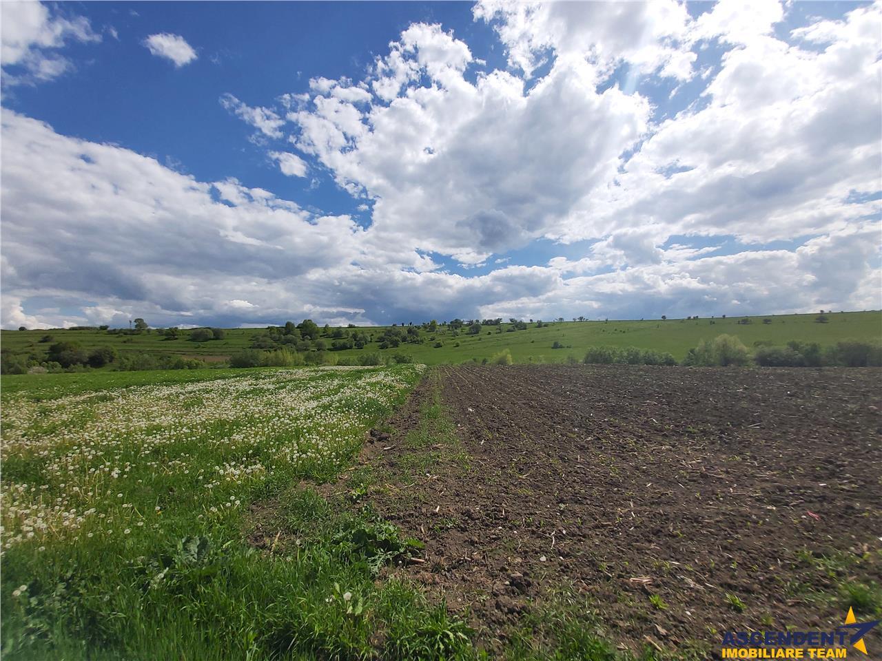 2.500 mp teren intravilan, zonare de case, Rotbav, Brasov