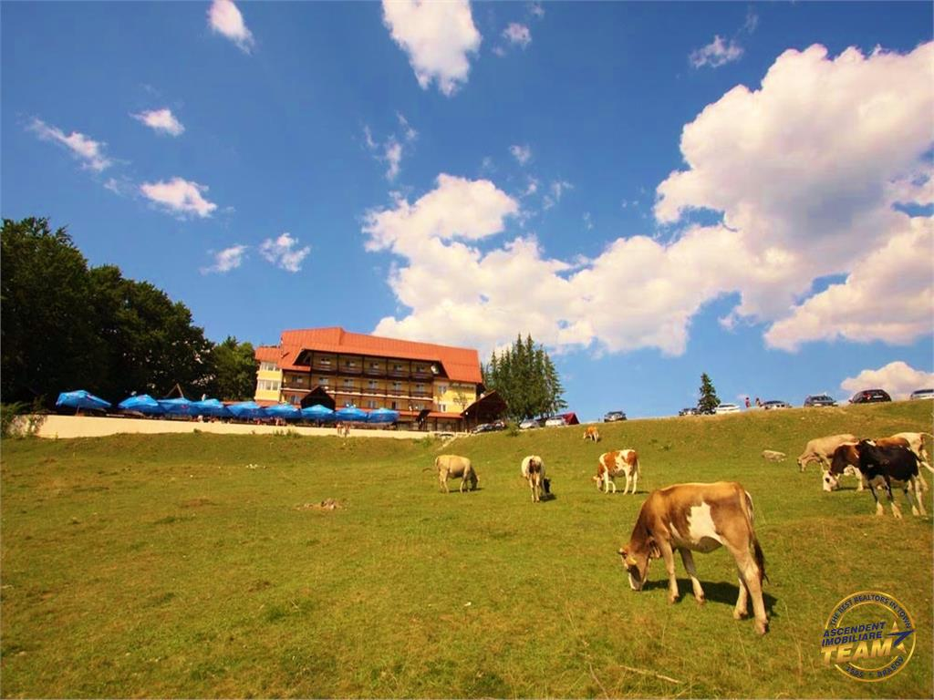 Oportunitate de investitie  3 hectare de teren langa Cabana Trei Brazi