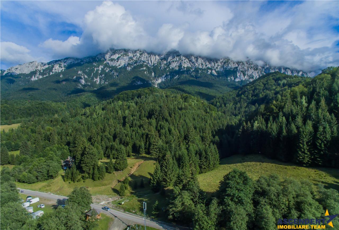 Poveste scrisa, pe un domeniu de peste 30.000mp teren, Zona rezervata