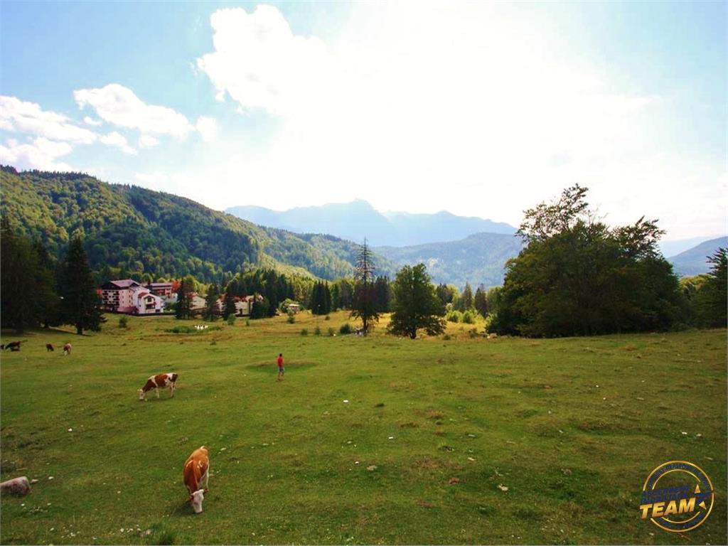 30,000 mp teren, locatie cu privelisti memorabile, la poalele Masivului Postavarul