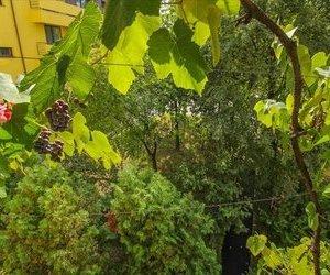 OFERTA TRANZACTIONATA!  Apartament cu vedere in verde, compozitie luminoasa