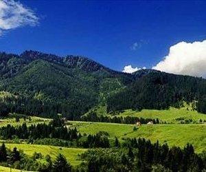 Imobil privilegiat de imbratisarea naturii, 2.200 mp teren,Brasov,Sacele-Central