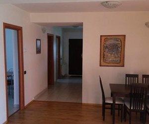 Vila, arhitectura primitoare, constructie noua, Brasov,
