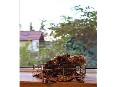 OFERTA REZERVATA!! Resedinta asezata in tabloul natural de la poalele Caraimanului