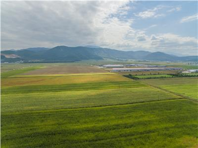 FILM PREZENTARE! Oportunitate de investitie la DN1, 5.000 mp, zona aeroportului Brasov