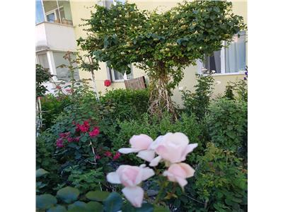 EXPLOREAZA VIRTUAL! Gradina de trandafiri, la fereastra ta, Sacele,   Brasov
