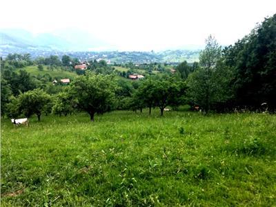 FILM PREZENTARE!! 20.000 mp in povestea naturii, Bran, Brasov