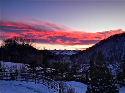 FILM PREZENTARE!! 12.000 mp in povestea naturii, Bran, Brasov