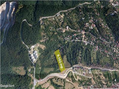 9.000 mp teren intravilan, Calea Poienii