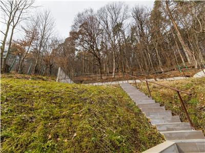 OFERTA TRANZACTIONATA! EXPLOREAZA VIRTUAL! Ambianta naturii, prin proprietate in vila, cu 60 mp terasa, Cetatea Brasovului
