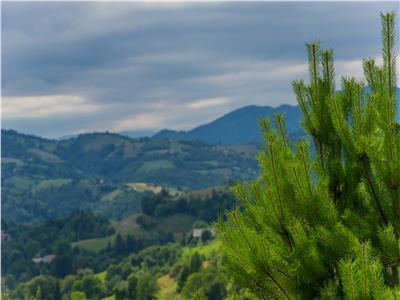 Vezi Filmare cu Drona!  Teren in farmecul peisajelor si traditia colindelor