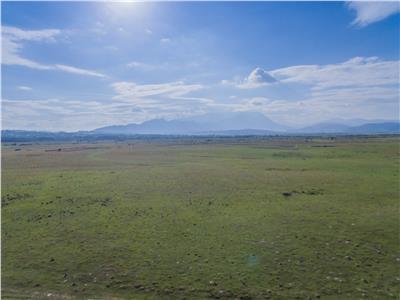 Teren cu vedere spre munti, strabatut de ape curgatoare, Rasnov, Brasov