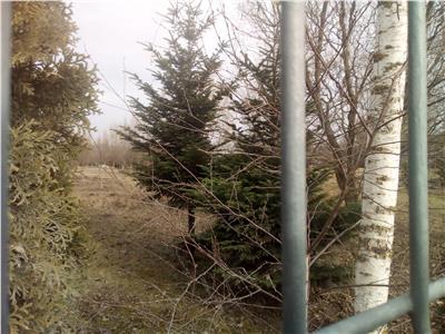 900 mp teren, intre case, Sanpetru, Brasov, destinat unei vile clasa A