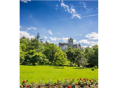 Locatie princiara, in inima naturii, zona Castelului Bran