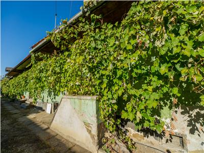 Casa original saseasca, cu peste 1.700 mp teren, Sanpetru