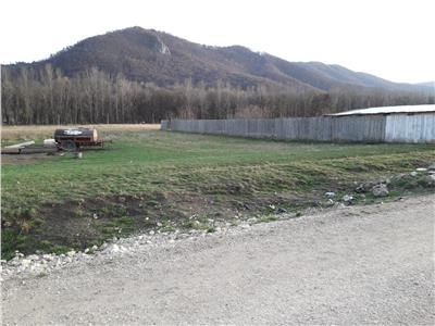 Recomandat enterprise rezidential/ industrial/ birouri,14.500 mp, Brasov