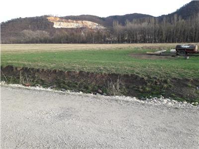 OFERTA REZERVATA!!Recomandat enterprise rezidential/ industrial/ birouri,14.500 mp, Brasov