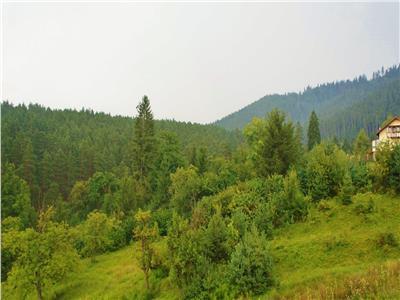Imobil, pozitie privilegiata de imbratisarea naturii, Brasov, Sacele- Central