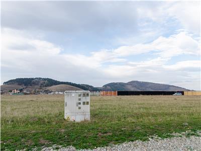 1.000 mp teren intravilan, in zona rezidentiala Dealul Lempes, Brasov, Sanpetru